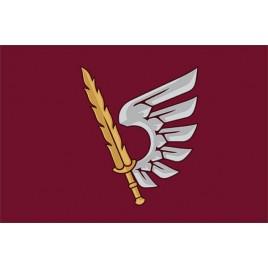 Флаг ДШВ 79-я отдельная десантно-штурмовая бригада