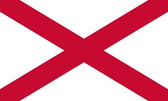 что означает красный флаг в битве зомби